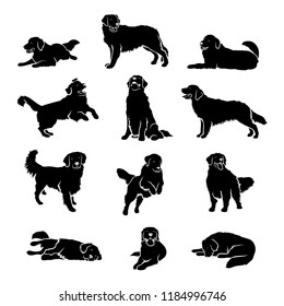 Set of Golden Retriever dog silhouettes - isolated vector illustration