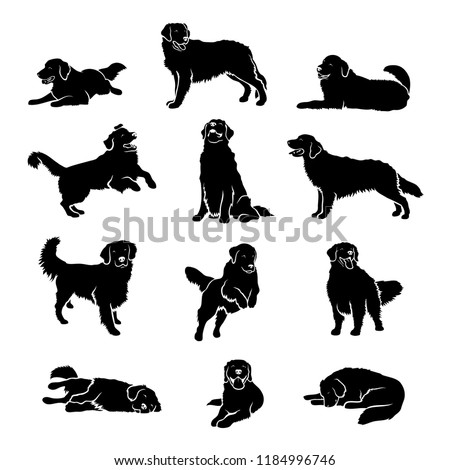 Set Golden Retriever Dog Silhouettes Isolated Stock Vector Royalty