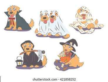 set of Golden Retrievers in halloween costume; dracula, ghost mummy, death, witch.