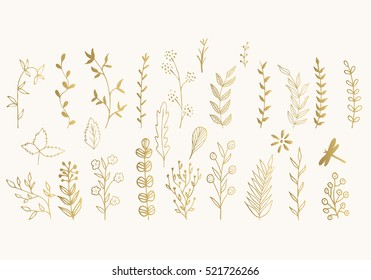 Set of golden vector floral design elements. Decoration elements for invitation, wedding cards, valentines day, greeting cards. Isolated.