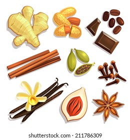 Set of Gourmet Coffee Spices. Vector illustration, eps10.