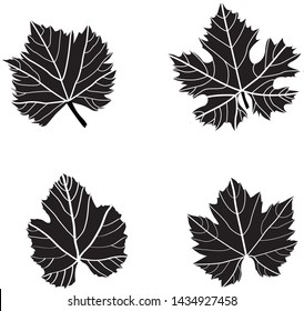 Set of Grape Wine Leaves Green on White Background Black & White - Illustration Isolated Icon