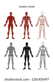 Set of Graphic Muscular man human figures