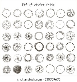 Set of graphic trees, top view, for architecture and landscape