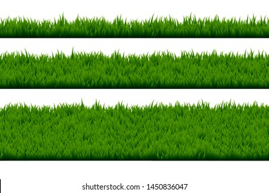 Set of grass isolated on white background.
