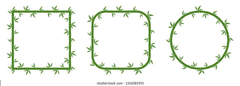 Set of green bamboo frames with leaves. Vector illustration. Bamboo stems. Bamboo frames.