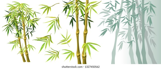 Set green bamboo stems and leaves isolated on white background. Vector illustration. Elements for computer games.
