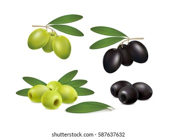 set of green and black olives on white background