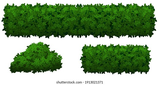 Set of green bushes and herbs of different shapes, isolated on white background. Dense shrubs to decorate parks and gardens. Vector illustration
