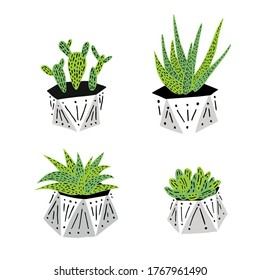 Set of green cacti and succulents in geometric pots.