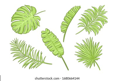 Set of green exotic leaves. Design elements in cartoon style.