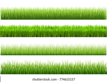 A set of green grass varieties. There are 4 styles to choose from. For vector illustrations