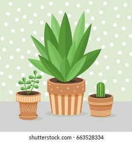 Set of green house plants. Vector flat illustration