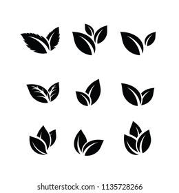 Set of Green Leaf Logo design inspiration vector icons