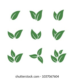 set of green leaf logo template