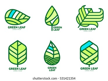 Set of green leaf logo templates, vector illustration isolated on white background. Collection of green leaf logotype template, environment protection, nature, growth, development concept
