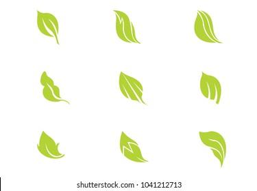 set green leaf vector illustration on background