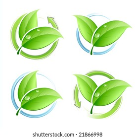 Set of green leaves