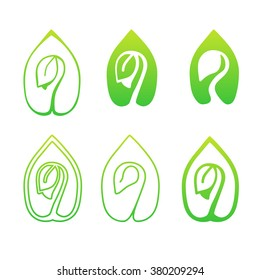Set of green leaves design elements. Green sprout green leaves symbol vector icon set.