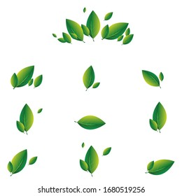 Set of green leaves on a white background. eco, nature and leaf logo inspiration