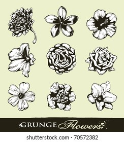 Set of grungy flowers. Layered. Vector EPS 10 illustration.
