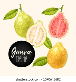 Set of guava fruits