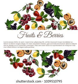 set hand draw colored sketch with fruit, berries and leaves. vector illustration