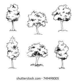 Set of  hand drawin sketch trees