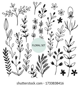 Set of hand drawn abstract floral sprigs silhouette. Black and white outline vector illustration. Decorative branches. Spring and summer leaf icons collection. Doodle style.