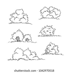 Set of hand drawn architect bushes, dendrology sketch collection, graphic template