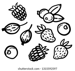 Set of hand drawn berries: raspberry, blueberry, gooseberry, strawberry. Stylized linear cartoon doodle. Outline isolated on white background.