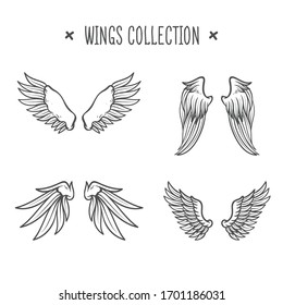 Set of hand drawn bird or angel wings of different shape in open position.