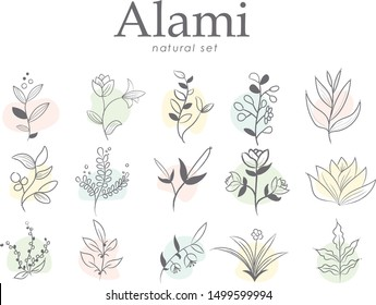 Set of hand drawn botanical element, natural, leaf icon and line art. Alami mean natural in indonesian language
