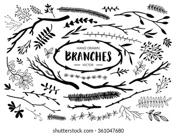 Set of hand drawn branches. Ink illustration.