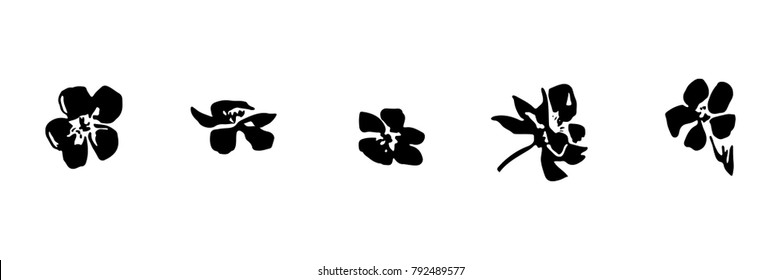 Set of hand drawn brush paint cherry blossoms. Sakura flowers painted by ink. Black isolated vector on white background.