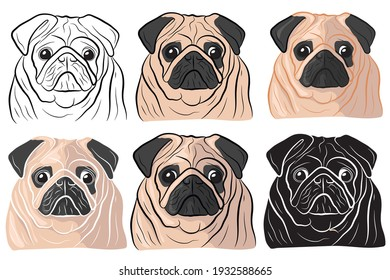 Set of Hand drawn cartoon portrait of a pug. Funny happy smiling pug face. Dogs, pets themed design element, icon, logo.