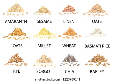 Set of hand drawn colored piles of cereal grains isolated on white. Amaranth, sesame, linen, oats, millet, wheat, rye, sorgo, chia, barley, rice. Stylized vector illustration.
