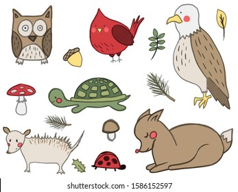 A set of hand drawn cute forest animals. Deer, american eagle, owl, red cardinal bird, mushroom, acorn, opossum. Vector collection perfect for childish decoration clothes, patterns,stickers, cards