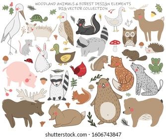 A set of hand drawn cute forest animals. Deer, american eagle, owl, red cardinal bird, mushroom, acorn, opossum,bear. Vector collection perfect for childish decoration clothes,patterns,stickers, cards