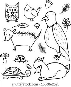 A set of hand drawn cute outline forest animals. Deer, american eagle, owl, red cardinal bird, mushroom, opossum. Vector collection perfect for childish decoration clothes, patterns,stickers, cards
