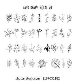 Set of hand drawn elements with floral elements and leaves, design  for invitations, greeting cards, quotes, blogs, posters. Decorative elements for design. Ink, vintage vector