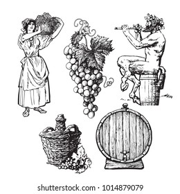Set of hand drawn elements for wine design. Beautiful peasant woman carrying basket, bunch of grapes, Satyr, bottle demijohn, barrel. Vector illustration in vintage style isolated on white background