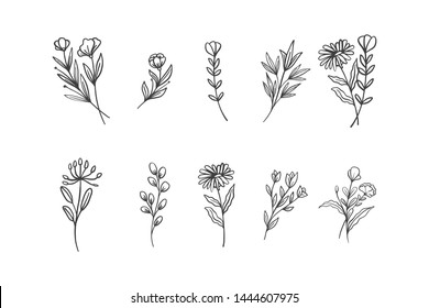 Set of Hand Drawn Flowers