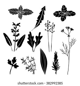 Set of hand drawn herbs, black isolated vector objects
