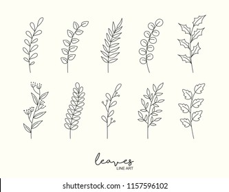Set of hand drawn leaves and floral. Decorative elements for design. Vector illustration.