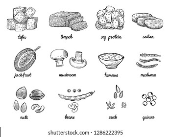 Set of hand drawn meat alternative or analogue for vegans, vegetarians, healthy eating. Food icons of soy protein, beans, tempeh etc. Black and white doodle vector illustration