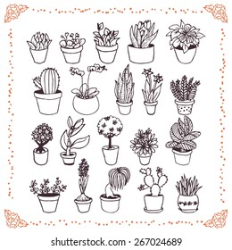 set of hand drawn plants in pots doodles on white background