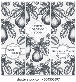 Set of hand drawn sketch banners with figs. Vintage eco food drawing. Vector illustration.