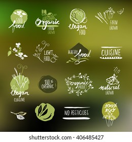 Set of hand drawn style labels and badges for organic food and drink, natural products, restaurant, healthy food market and production, on the nature background. Vector illustrations.