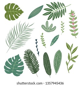 Set of hand drawn tropical leaves